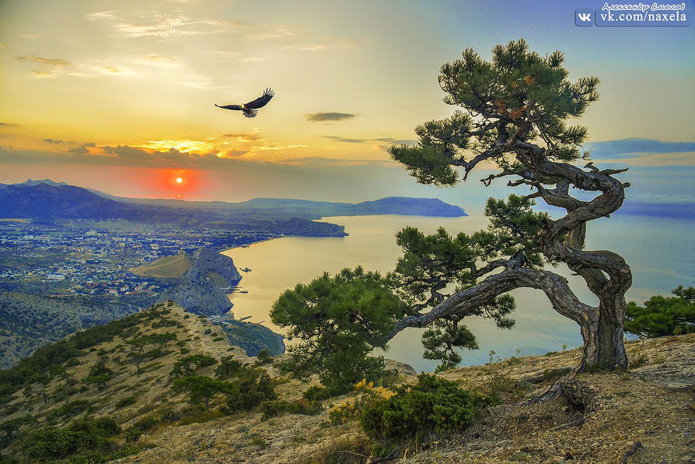 Судак, рассвет с горы Сокол