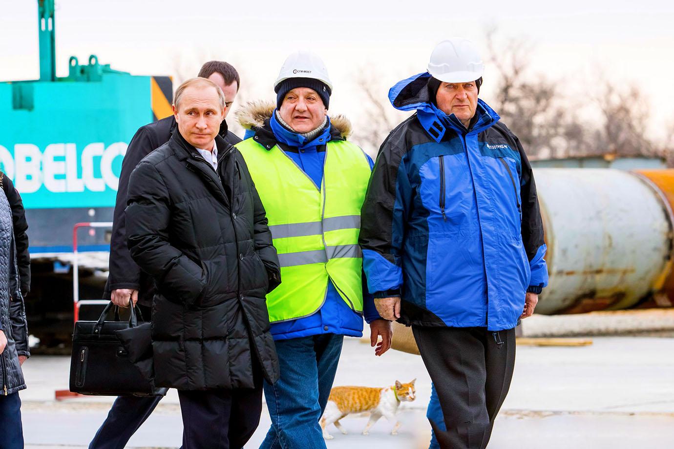Владимир Путин, кот Мостик