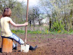 огород, девушка с лопатой