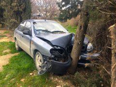 Авария в дерево на ЗАЗ