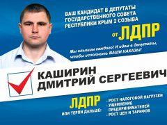 Каширин ЛДПР Судак